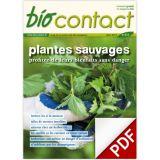 "n°233 - ""Plantes sauvages"""