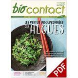 n°296 - Les algues