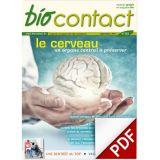 n°282 - Le cerveau